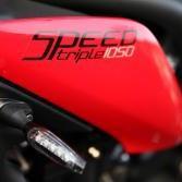 speedster666